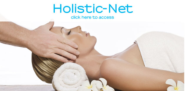 Holistic-Net